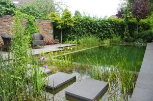natural-pool-pond-water-garden-stepping-stones